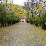 Исторический бульвар Севастополь