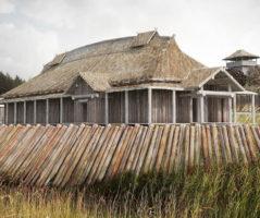 kinopark-viking6